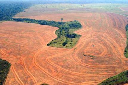 amazon_deforestation