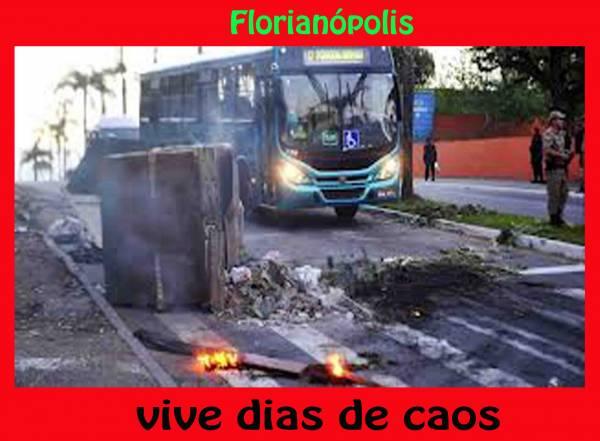 brasil spreading