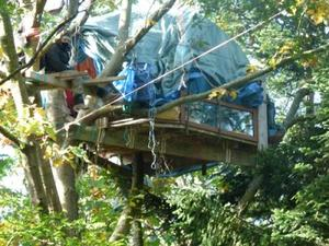ZAD_notre_dame_des_landes_operation_foret_de_rohane-400x300.img_assist_custom-300x225