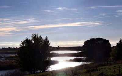 Las Tablas is a vast wetland in Castilla-La Mancha that supports migrating birds and native wildlife. In 2009-10 a government plan to divert water from the Tajo-Segura aqueduct was approved to tackle subterranean peat fires threatening the park, a UNESCO Biosphere Reserve.