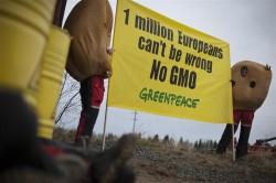 Greenpeace blockade GMO storage facility in northern Sweden<br /> Aktivister blockerar GMO-lager i Norrbotten