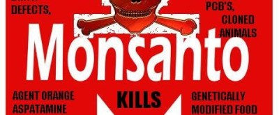 monsanto-kills-art-480x198