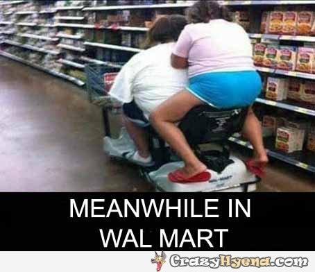 meanwhile-walmart-fat-girls-wheel-chair-photo