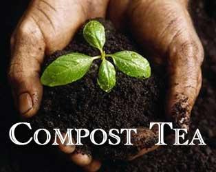compost_tea