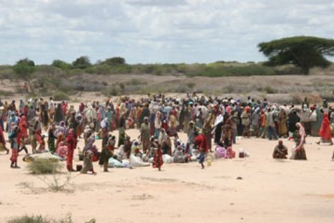 Somali-refuggee