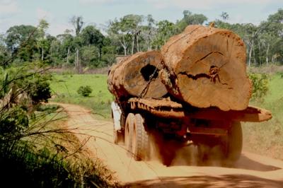loggers near Las Piedras
