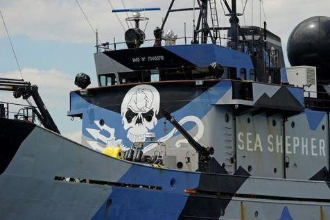 365810-le-bateau-steve-irwin-de-l-association-ecologique-americaine-sea-shepherd-le-7-decembre-2011-pres-de