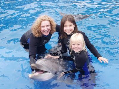 Dolphin_Swim_ 001