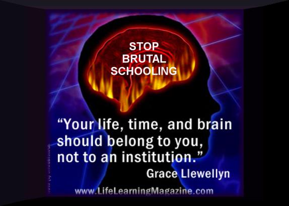 Smash Schooling.. Start Learning.. Ivan IllichIdeas