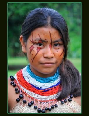amazonia-siekopai-3_0