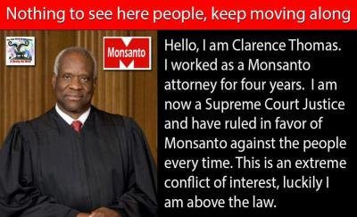 monsanto-judge