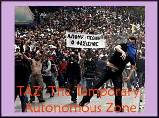 TAZ The Temporary Autonomous Zone