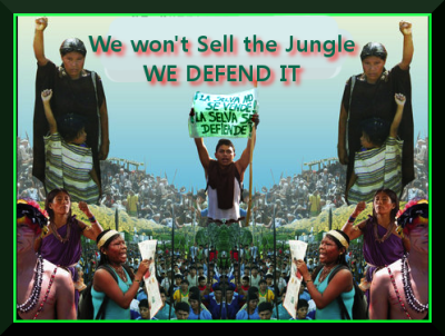 support bagua defendants