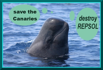 destroy repsol whale