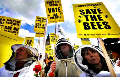 Beekeepers protest in Parliament Square to urge Britain's govern