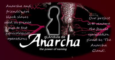 anarcha gland