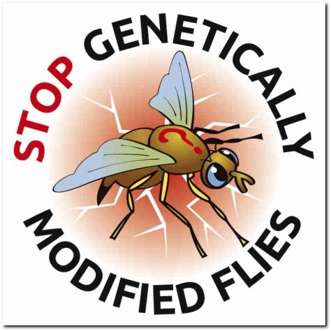 STOP-GMO-