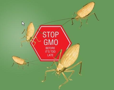 Stop-GMO