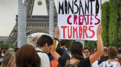 Demonstrators protest Monsanto Co. in Paris on May 23. The company says it will appeal a ruling by a French court that its herbicide Lasso poisoned a French farmer. (Mal Langsdon/Reuters)