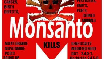 Court Finds Monsanto Guilty of Chemical Poisoning