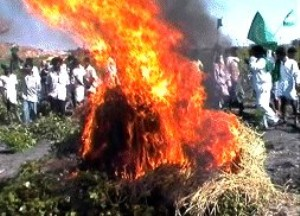 monsanto-burning