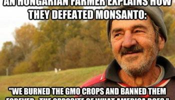 Declaring war against Monsanto and Corporate Criminals