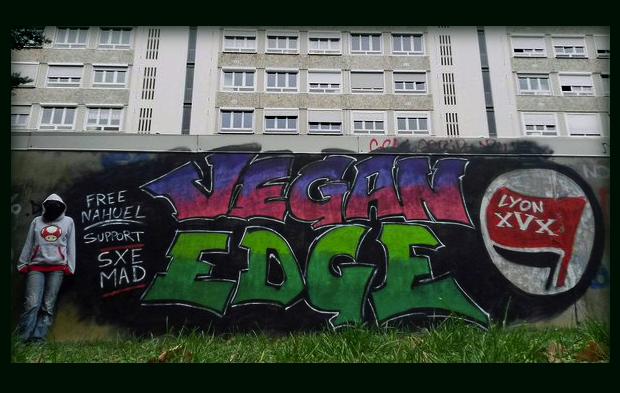 Revolución Real Ya @RRYrevolucion Jan 19View translation Lyon: Graffiti en apoyo al presx anarcovegano Nahuel, detenido en Madrid por sus actividades políticas #StraightEdgeAnarcofeminismoenpdf, Ecoanarquismo en pdf,
