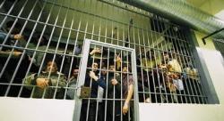 X-Greek-Prisons
