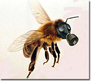 bee_with_gas_mask