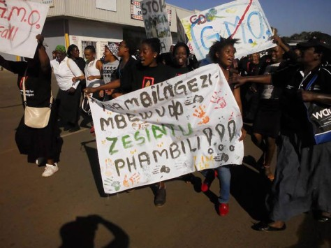 Narch agagaist Monstanto protesters in Mtubatuba, South Africa today.
