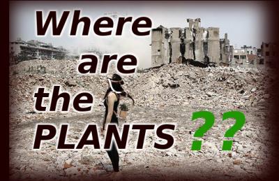 no plants