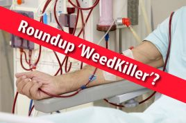 dramatic-increase-in-kidney-disease-in-the-us-and-abroad-linked-to-roundup-glyphosate-weedkiller-health-wellness-sott-net
