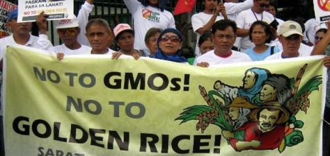 GMO-Rice_Filipinos-oppose_735_350_2-735x350