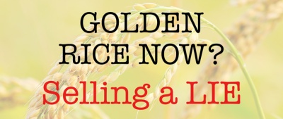Golden-rice-now-selling-a-lie-Website-710x300