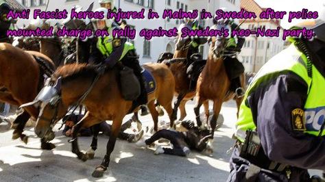 sweden-police-neo-nazi.si