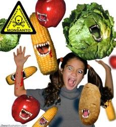300707GMfoods_dees