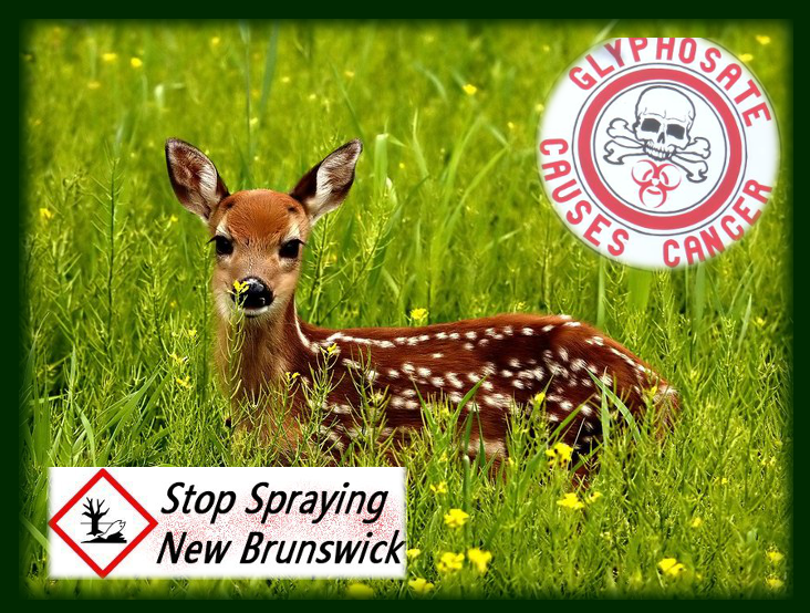 stop spraying glyphosate poison