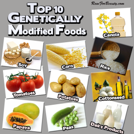 These foods are already mostly GMO in the USA, due to pressure to increase profits
