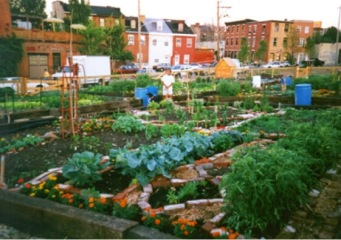 anarchist-community-garden