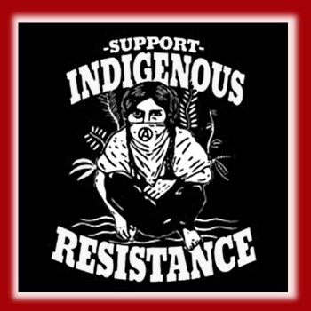 support-indigenous-resistance