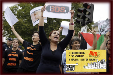 bds-report-2016