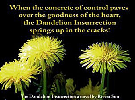 dandelion-salad