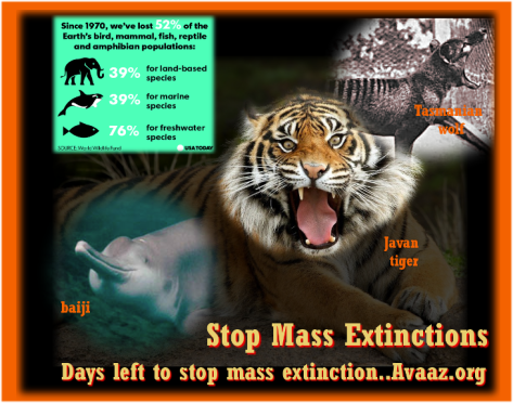 sstop-mass-extinctions