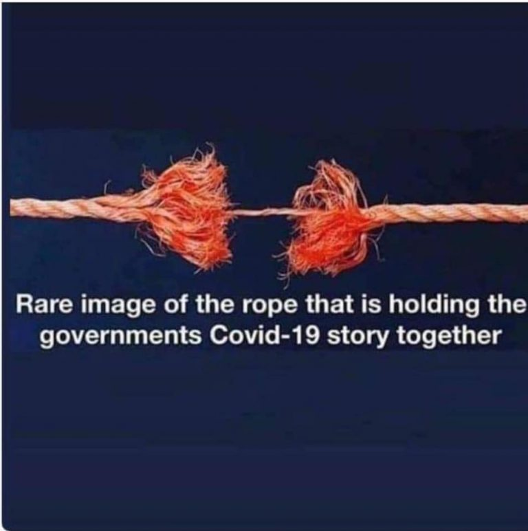 18 great Reasons I Won't be Getting the Covid Shots (fact checked) ++ 7 MORE 07-memes-8-768x773-1